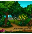 The garden with citrus tree and green trees vector image vector image