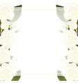 white rose flower banner card border vector image vector image