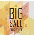 Big sale triangular abstract background vector image vector image