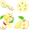 Colorful apples slices collection of vector image vector image