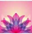 Colorful background with abstract flower vector image vector image