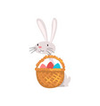 cute white easter bunny with basket of colorful vector image vector image