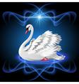 Elegant white swan vector image vector image