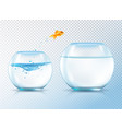 jumping golden carp composition vector image