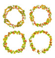leaves and autumn plants gathered in neat wreaths vector image vector image