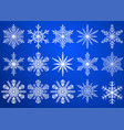 set of christmas snowflakes vector image vector image