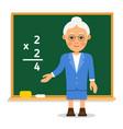 teacher elderly female teacher stand on lesson at vector image
