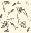 field herbs seamless pattern vector image