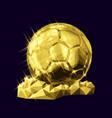 golden soccer football vector image