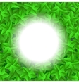 Green Leaves Pattern Summer Leaves Background vector image