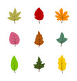 set of monochrome icons with leaves vector image vector image
