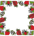 strawberry fruit frame empty template vector image vector image
