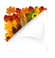 Vintage autumn paper with fall leaves vector image