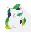 a bunch of grapes isolated on vector image