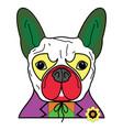 comic villain symbol in colorful joker costume wi vector image vector image