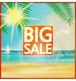 Final summer sale design template with beach vector image
