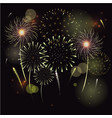 fireworks in night sky clipart vector image