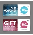 Gift voucher template with colorful and modern vector image vector image