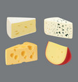 cheese realistic tasty gourmet sliced food vector image vector image