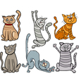 funny cats set cartoon vector image