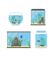 Glass Aquarium Set for Interior Home vector image vector image