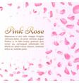 pink rose or sakura falling petals elegant vector image vector image