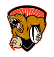 rugby bear shield vector image vector image