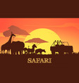 safari sunset poster vector image vector image