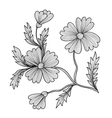 decorative cornflower vector image vector image