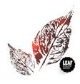 design leafes vector image vector image