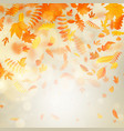 gold autumn bokeh background with maple autumn vector image vector image