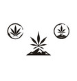 hemp cannabis cbd mountain mount wine stain logo vector image