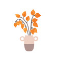 physalis in vase hand drawn vector image