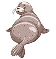 Seal with happy face vector image
