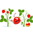 strawberry character rest in hammock drink juice vector image