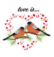 two birds in love valentine s day postcard free vector image