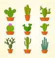 cactus decorative home plant in pots flat vector image vector image