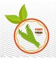 farm fresh food symbol vector image