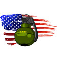 hand grenade with american vector image