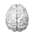 human brain consist of dots connected by lines in vector image vector image