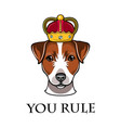 jack russell terrier in crown dog vector image vector image