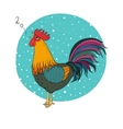 Rooster Cartoon cock vector image vector image
