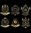 set of retro vintage insignias created with vector image vector image