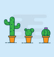 cactus flat design vector image vector image