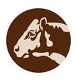 cow head logo or icon farm domestic animal vector image vector image