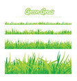green grass of different heights vector image vector image