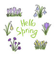 Hello spring colored sketch set first flowers and