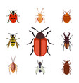 insect icon flat isolated nature flying bugs vector image vector image