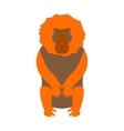 monkey baboon vector image vector image