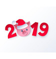 new year cute piggy face in santa hat vector image